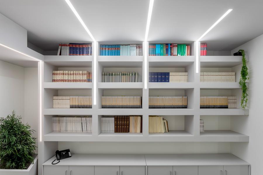 Luce & Light LEX Law Firm
